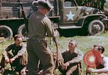 Image of United States Army soldiers France, 1945, second 61 stock footage video 65675020431