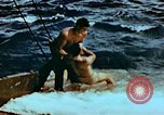 Image of Amphibious task force Pacific Theater, 1944, second 14 stock footage video 65675020458