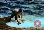 Image of Amphibious task force Pacific Theater, 1944, second 16 stock footage video 65675020458