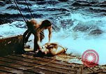 Image of Amphibious task force Pacific Theater, 1944, second 19 stock footage video 65675020458