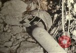 Image of bomb wrecked airplanes North Africa, 1942, second 55 stock footage video 65675020507