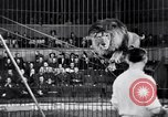 Image of circus performance Berlin Germany, 1944, second 24 stock footage video 65675020575