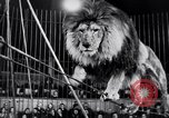 Image of circus performance Berlin Germany, 1944, second 33 stock footage video 65675020575