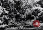 Image of New Guinea Campaign Papua New Guinea, 1944, second 33 stock footage video 65675020581