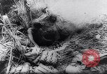 Image of New Guinea Campaign Papua New Guinea, 1944, second 45 stock footage video 65675020581
