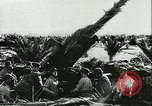 Image of German troops Tunisia North Africa, 1942, second 30 stock footage video 65675020598