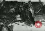 Image of German troops Russia, 1941, second 32 stock footage video 65675020599