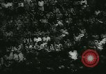 Image of Axis meeting Germany, 1944, second 25 stock footage video 65675020615