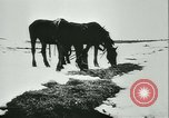 Image of Col Lucien Lippert Soviet Union, 1944, second 8 stock footage video 65675020641