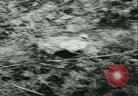 Image of Col Lucien Lippert Soviet Union, 1944, second 15 stock footage video 65675020641
