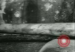 Image of Liberation of France France, 1944, second 40 stock footage video 65675020655