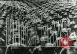 Image of Battle of Caen Caen Normandy France, 1944, second 13 stock footage video 65675020669