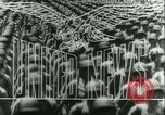 Image of Battle of Caen Caen Normandy France, 1944, second 14 stock footage video 65675020669