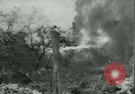 Image of Liberation Europe, 1944, second 60 stock footage video 65675020675