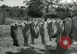 Image of German soldiers France, 1941, second 44 stock footage video 65675020679