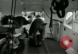 Image of wounded soldiers Tokyo Japan, 1950, second 49 stock footage video 65675020766