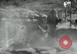 Image of United States troops Korea, 1953, second 11 stock footage video 65675020773