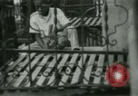 Image of life in the Bronx Bronx New York City USA, 1965, second 15 stock footage video 65675020827