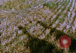 Image of Farm machinery United States USA, 1958, second 3 stock footage video 65675020865