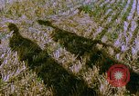 Image of Farm machinery United States USA, 1958, second 5 stock footage video 65675020865