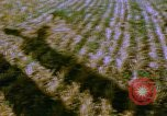 Image of Farm machinery United States USA, 1958, second 7 stock footage video 65675020865