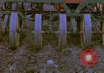 Image of Farm machinery United States USA, 1958, second 20 stock footage video 65675020865