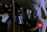 Image of Milk production United States USA, 1958, second 10 stock footage video 65675020868