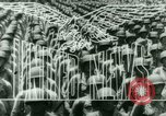Image of Henry Wallace Latin America, 1943, second 13 stock footage video 65675020883