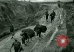 Image of French Colonial troops China, 1945, second 26 stock footage video 65675020887