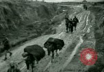 Image of French Colonial troops China, 1945, second 27 stock footage video 65675020887