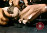 Image of Puppy in life preserver United Kingdom, 1944, second 22 stock footage video 65675020899