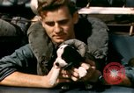 Image of Puppy in life preserver United Kingdom, 1944, second 31 stock footage video 65675020899