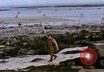 Image of Allied troops advancing through ruins and beach obstacles Valognes France, 1944, second 45 stock footage video 65675020907