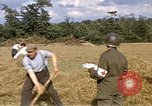 Image of French farmers France, 1944, second 5 stock footage video 65675020910