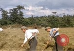 Image of French farmers France, 1944, second 8 stock footage video 65675020910