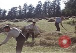 Image of French farmers France, 1944, second 22 stock footage video 65675020910