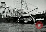 Image of Invasion of Normandy Normandy France, 1944, second 54 stock footage video 65675020934