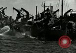 Image of Invasion of Normandy Normandy France, 1944, second 5 stock footage video 65675020938
