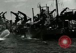 Image of Invasion of Normandy Normandy France, 1944, second 7 stock footage video 65675020938