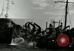 Image of Invasion of Normandy Normandy France, 1944, second 15 stock footage video 65675020938