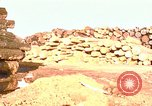 Image of log piles California United States USA, 1967, second 2 stock footage video 65675020971