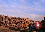 Image of log piles California United States USA, 1967, second 10 stock footage video 65675020971
