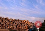 Image of log piles California United States USA, 1967, second 11 stock footage video 65675020971