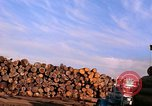 Image of log piles California United States USA, 1967, second 13 stock footage video 65675020971