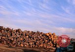 Image of log piles California United States USA, 1967, second 14 stock footage video 65675020971