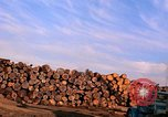 Image of log piles California United States USA, 1967, second 15 stock footage video 65675020971