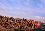 Image of log piles California United States USA, 1967, second 16 stock footage video 65675020971