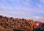 Image of log piles California United States USA, 1967, second 17 stock footage video 65675020971