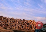 Image of log piles California United States USA, 1967, second 18 stock footage video 65675020971