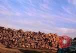 Image of log piles California United States USA, 1967, second 19 stock footage video 65675020971
